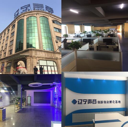 白塔区区长佟恩凡到辽宁声谷 双创孵化基地考察指导 分公司新闻 第6张