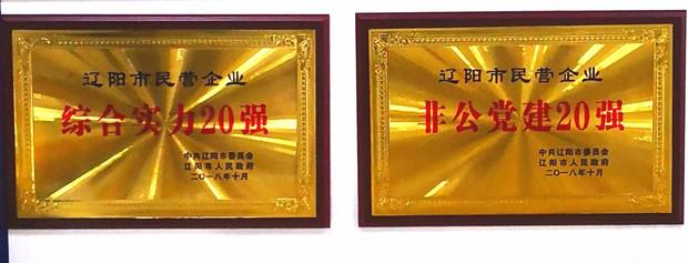 辽联集团荣获辽阳市民营企业综合实力20强等多项表彰 新闻资讯 第2张