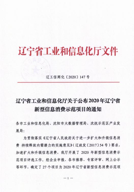 辽联信息数字城区荣获辽宁省新型信息消费示范项目